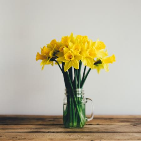 Frühlingsartikel